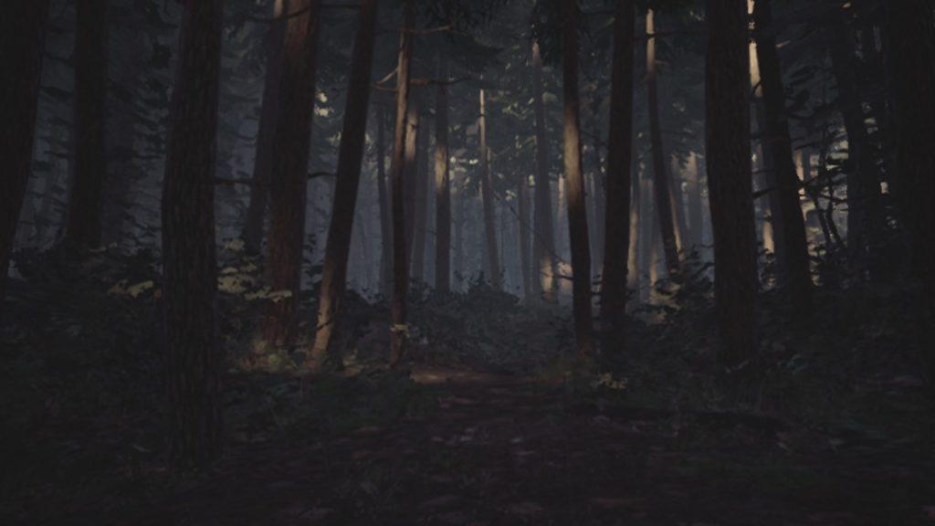 Обзор: Blair Witch - Да будет свет! 10