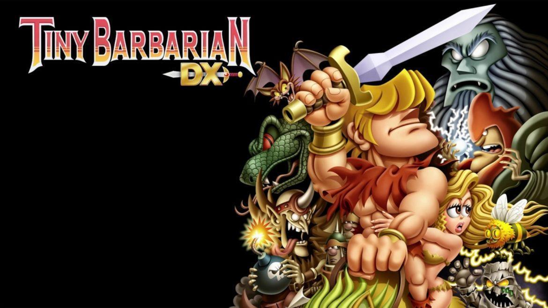 Tiny Barbarian DX - Варварское сумасшествие 2