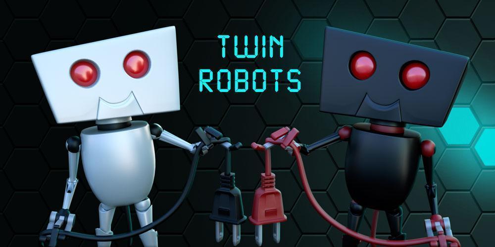 Обзор: Twin Robots - Черно-белый порт 2