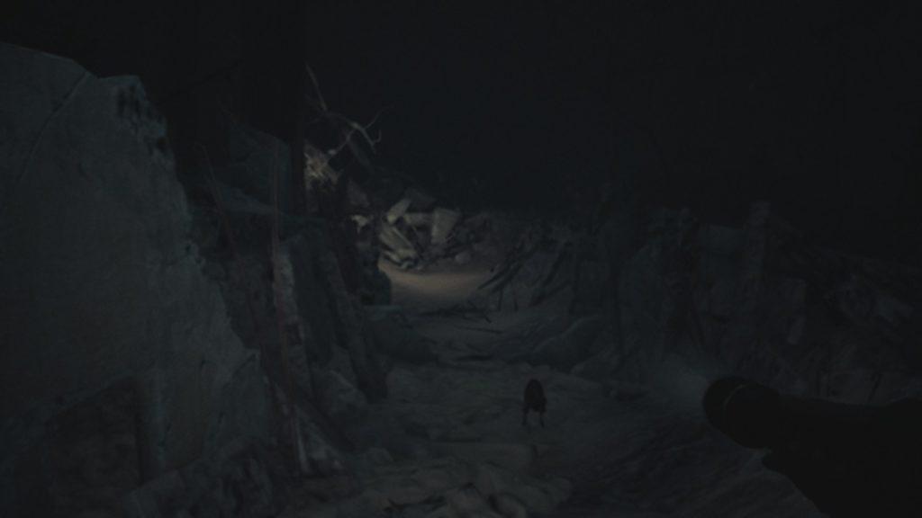 Обзор: Blair Witch - Да будет свет! 15